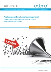 Download Whitepaper Leadmanagement